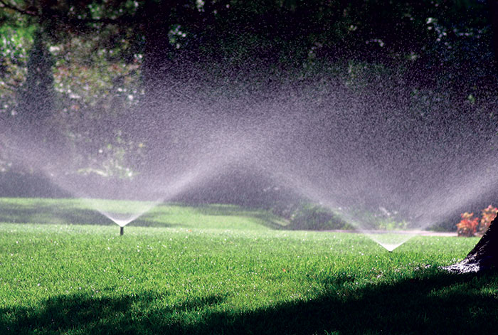 Affordable Landscape Water Saving Irrigation Systems