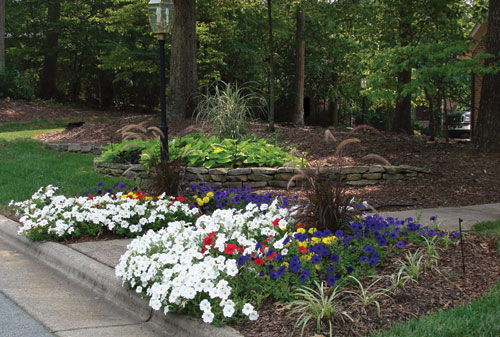 Landscaping For Beauty... Annual Color Beds