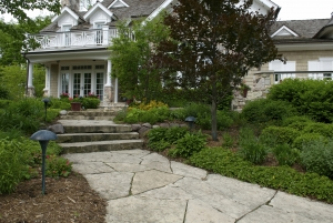 Hardscapes... walkways in the landscape